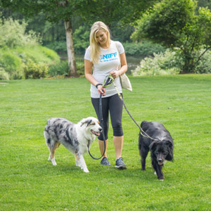 Find The Best Dog Walker In Orange County CA